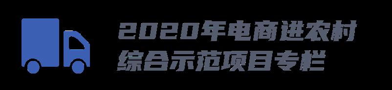 2020电shang进nong村.png